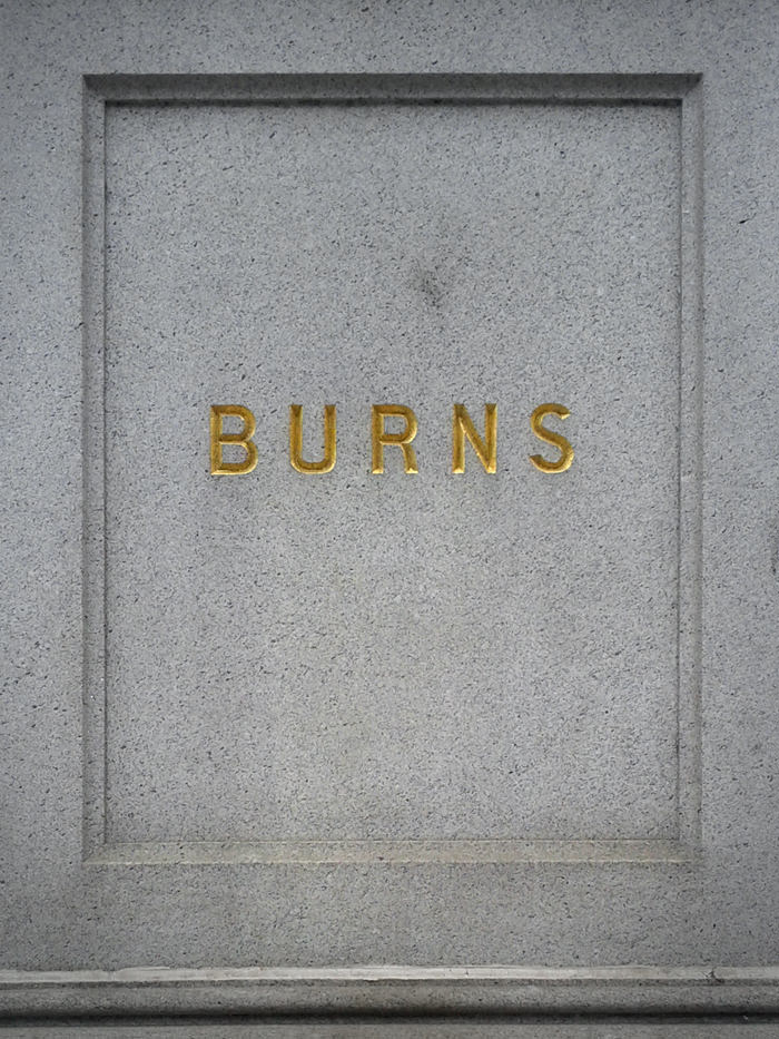Burns by Lee Broughall